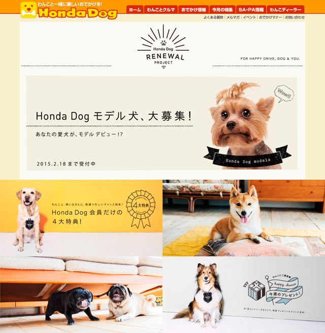 Hdog_03