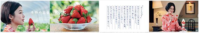 TDC_ichigo_180221_ol