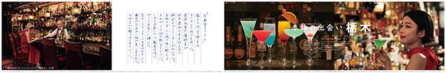 TDC_cocktail_180308_ol